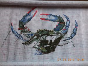 Progress on Queenstown Blue Crab 7/21.