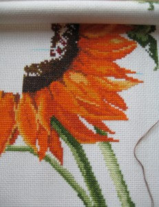Sunshine Sunflowers 12-06-2010